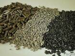 Greenfield Incorporation sells Sunflower Meal /wholesale/ - фото 1