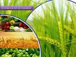 전세계 살충제 제조업체 및 공급 업체 - photo 1